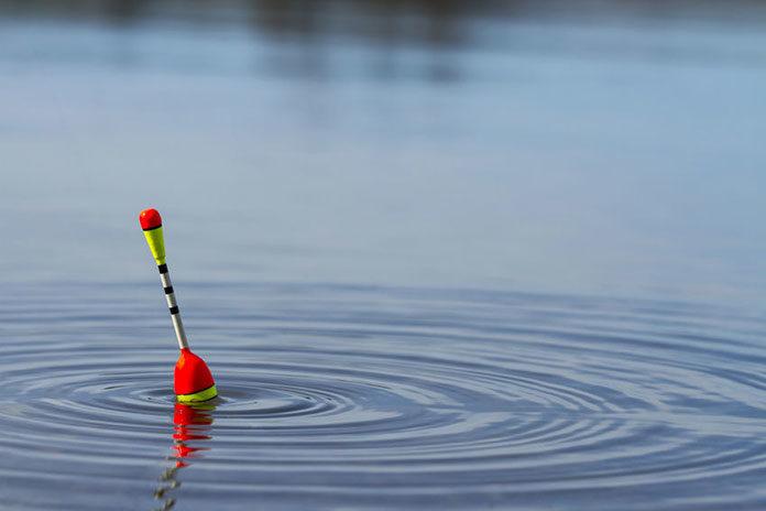 Jak skutecznie łowić metodą gruntową feeder?