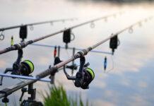Najpopularniejsze komercyjne łowiska karpiowe w Polsce